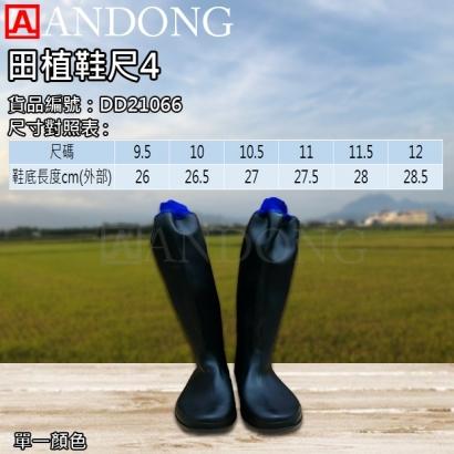 田植鞋尺4.jpg